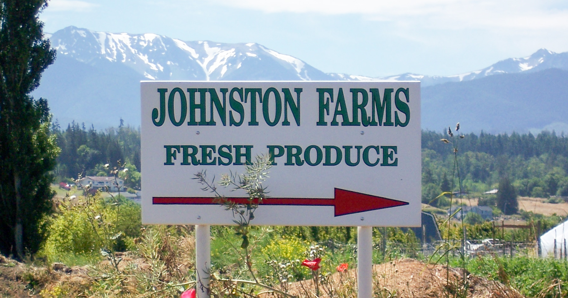 johnston-farms-sign-1900X1000